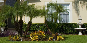 /cape-coral-fort-myers-planting-services/grass-sod-garden-beds-planting
